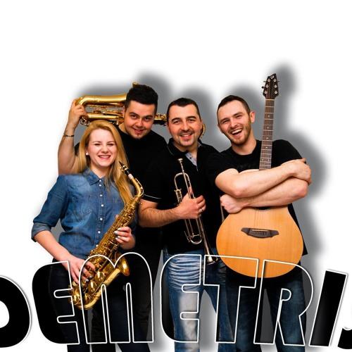 Zespół Muzyczny Demetris's avatar