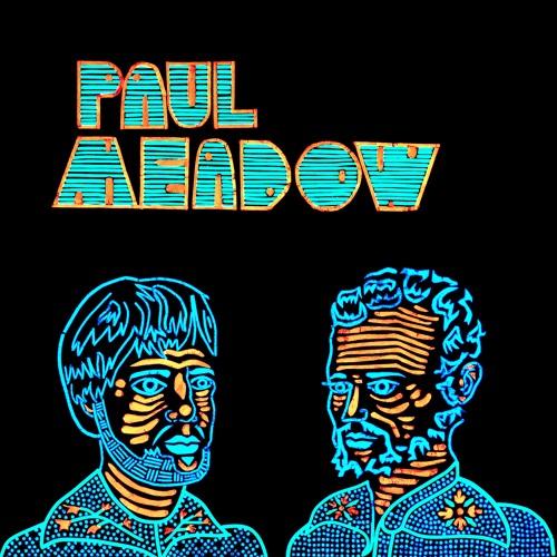 Paul Meadow's avatar