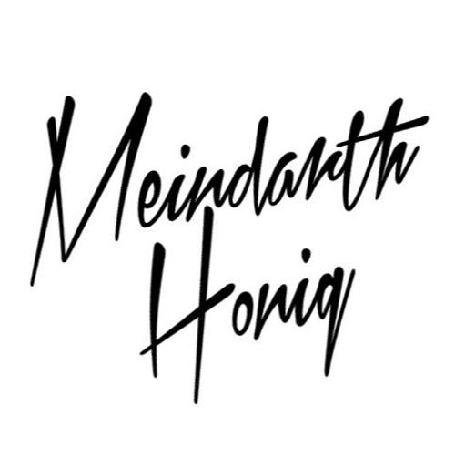 Meindarth Honig's avatar