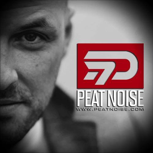 Peat Noise's avatar