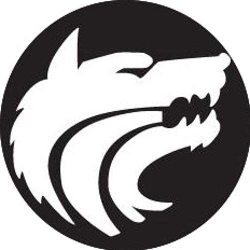 EnvariexMusic's avatar