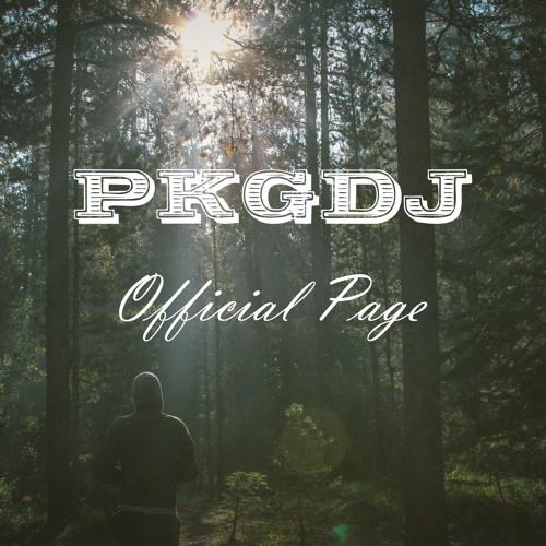 PKGDJ's avatar