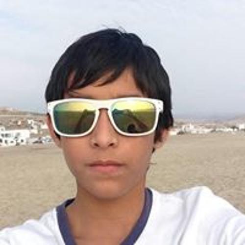 Nicolas Orellana's avatar
