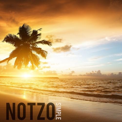NotzoSimple's avatar