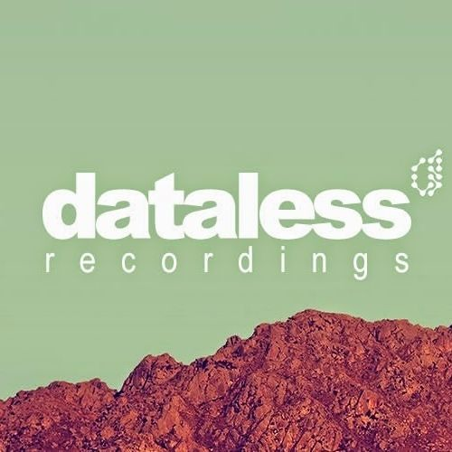 Dataless Recordings's avatar