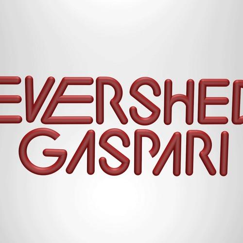 DJs Evershed & Gaspari's avatar
