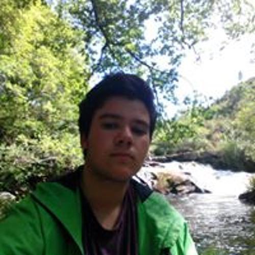 user315656305's avatar