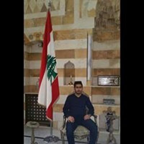 Ahmad Monzer's avatar