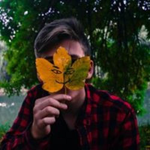 Alex Ado's avatar