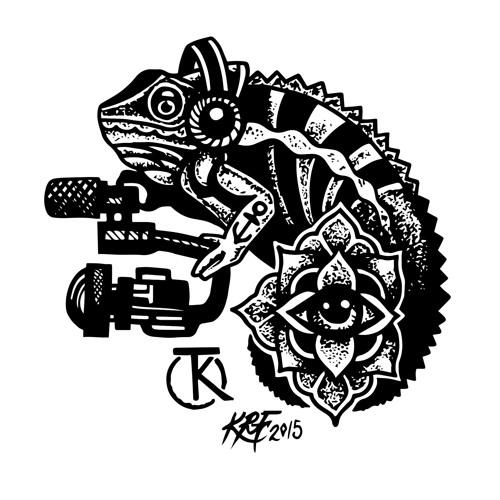 Traveling Kameleon's avatar