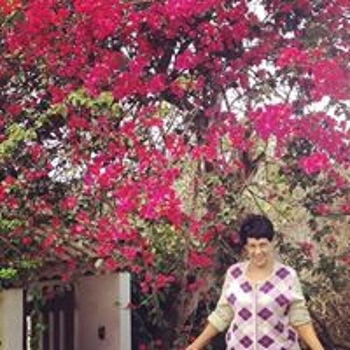 Rosemeire Caña's avatar
