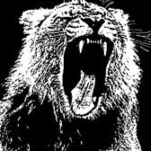rey 23's avatar