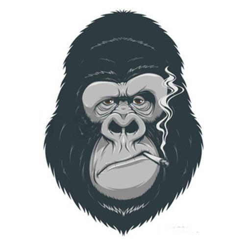 Alpha Dog Records's avatar