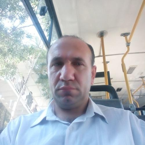 asmet hamidi's avatar