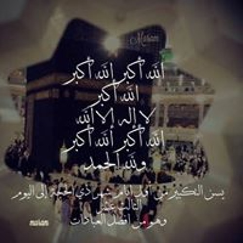 May Elhaady's avatar