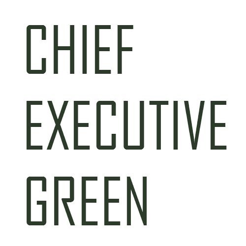 Chief Executive Green's avatar