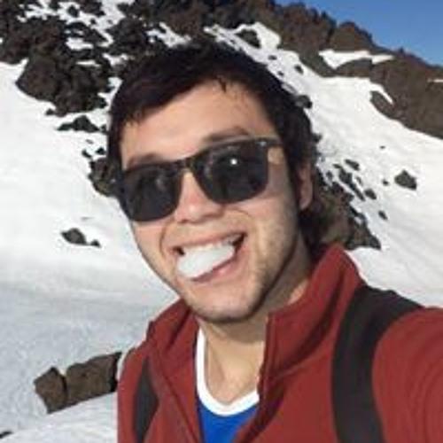 Ygnacio Andres Herrera's avatar