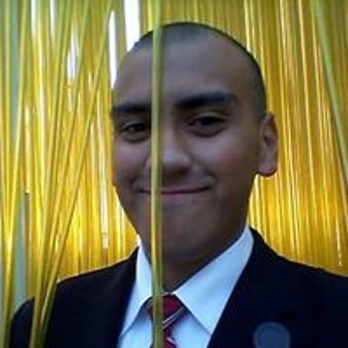 Luis Palacios's avatar