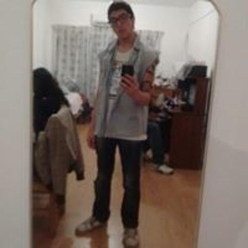 Leandro Mayer's avatar