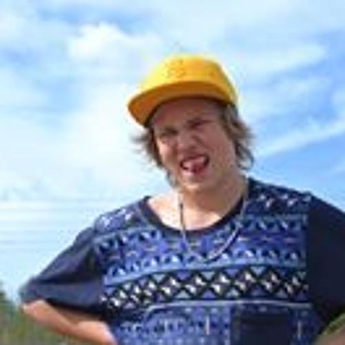Niklas Sildeberg's avatar