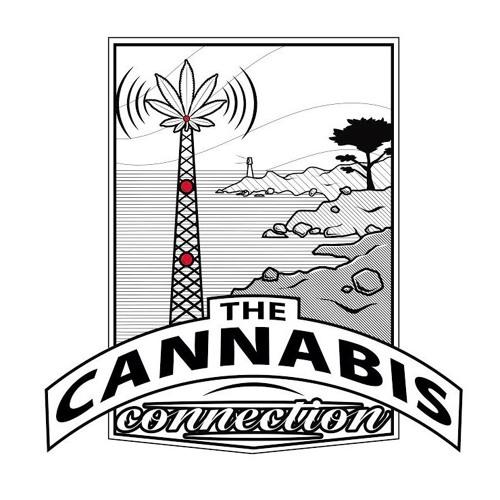 the.cannabis.connection's avatar