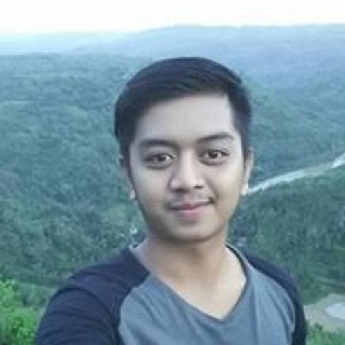 Ade Riza Wieyana Putra's avatar