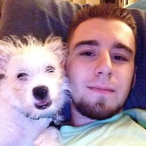 Andrew Davidek's avatar