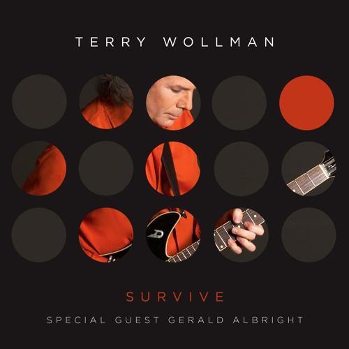 terrywollmanmusic's avatar