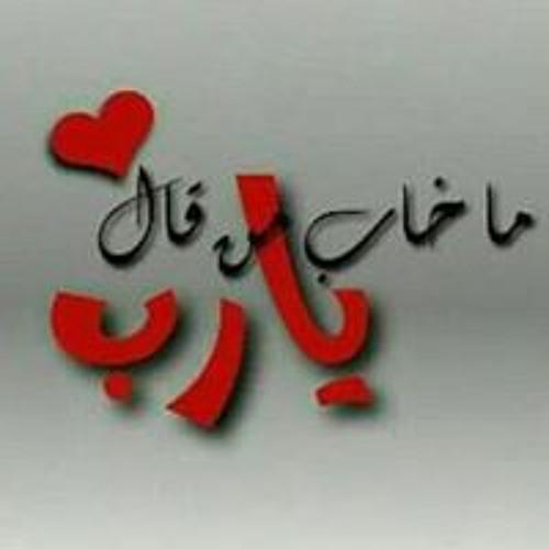 Ahmed Elghamry's avatar