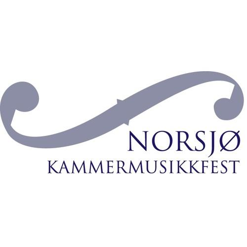 Norsjø Kammermusikkfest's avatar