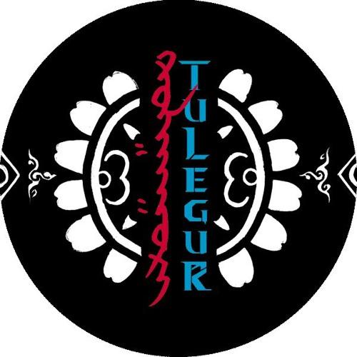 Tulegur图利古尔's avatar