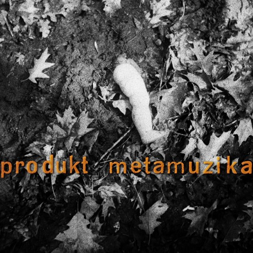 produkt metamuzika's avatar
