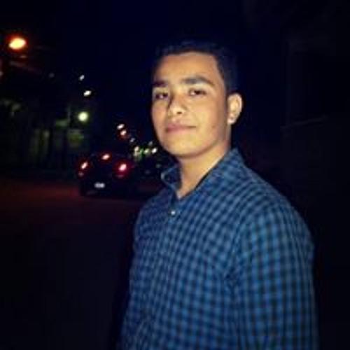 Mohamed Shawkey's avatar