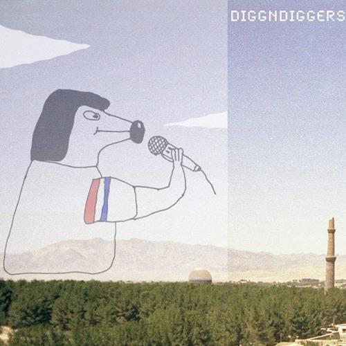 DIGGNDIGGERS's avatar