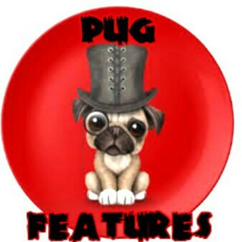 Pug Features's avatar