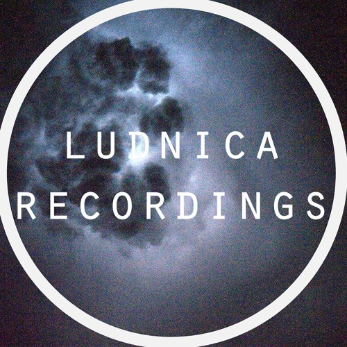 Ludnica Recordings's avatar