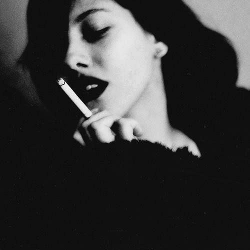 Anastasia van Noorden's avatar