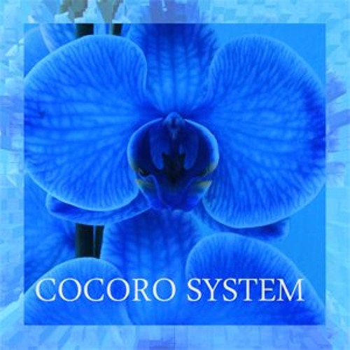 COCORO SYSTEM's avatar