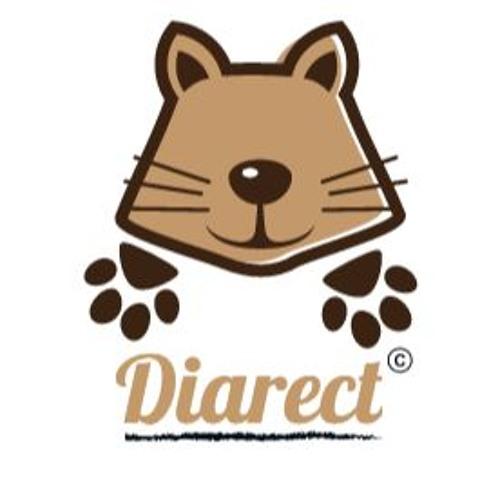 Diarect's avatar