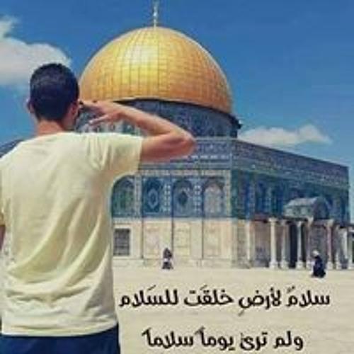 أحمد المصري's avatar