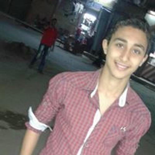 Mohamed Elmessery's avatar