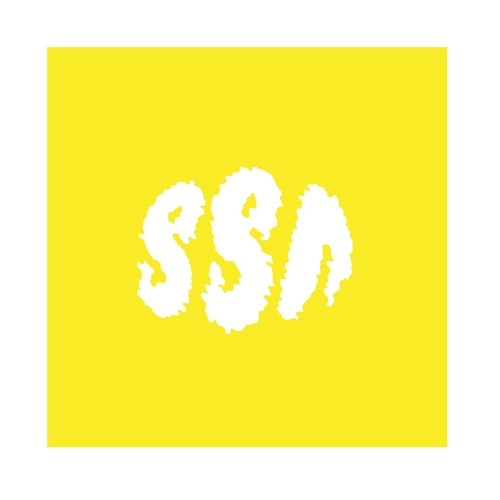 Shiny Shiny New's avatar