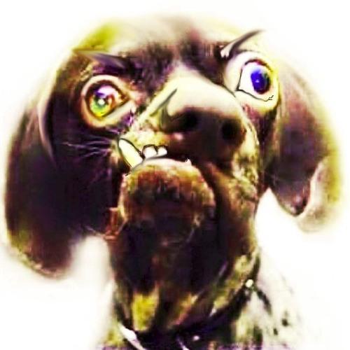 guanokalong's avatar