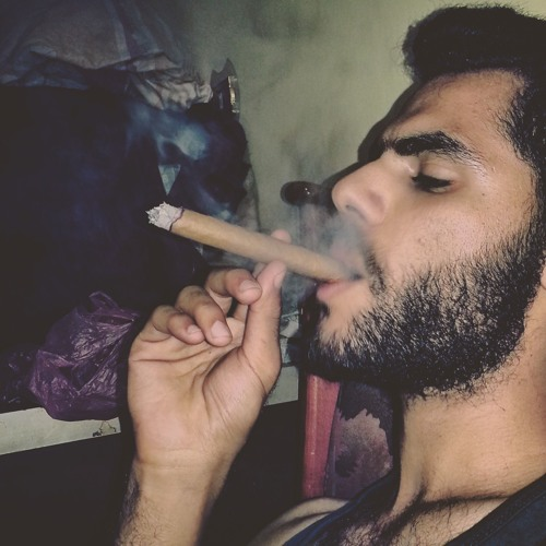 Ahmed Gado's avatar