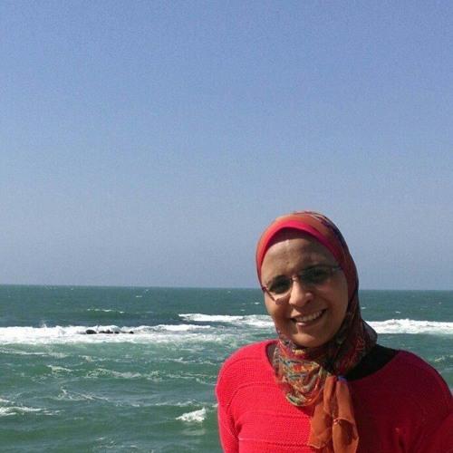 Noha Ahmad's avatar