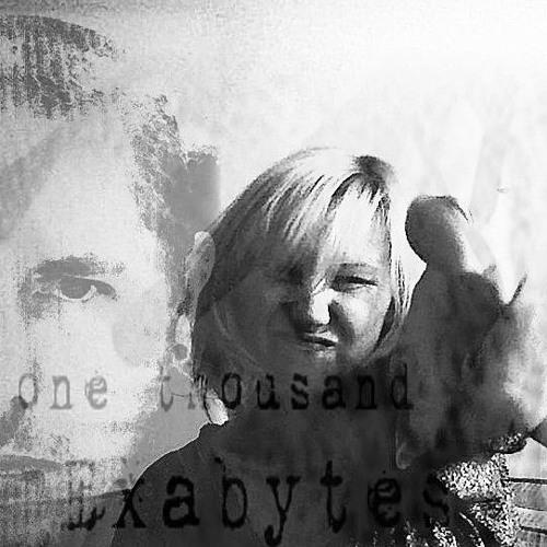 One_Thousand_Exabytes's avatar
