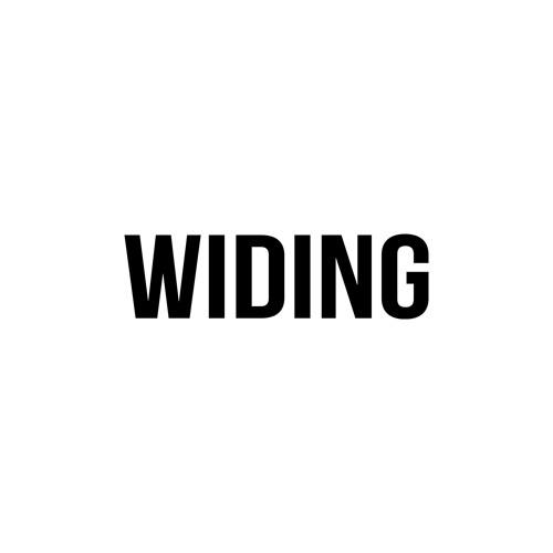 Widing's avatar