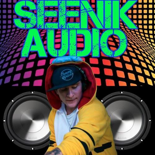 seenik Audio's avatar