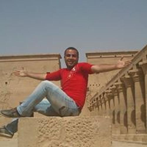 Mohammedelnopee Elhelaly's avatar