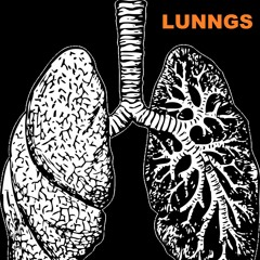 Lunngs